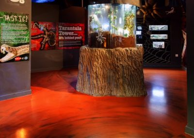Blue Planet Aquarium Commercial Flooring